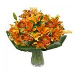 Della valle piante e fiori piazza d'uomo 2 caserta 0823322657